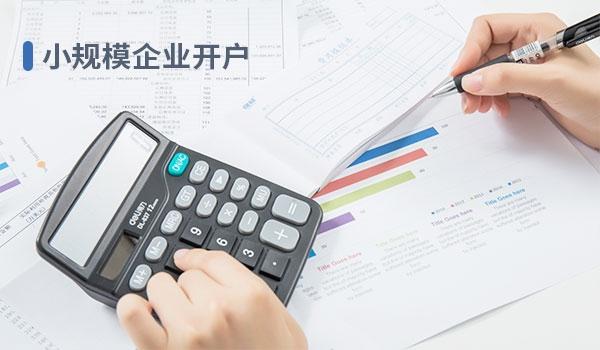 高新企业专项审计